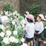 伊丹市立 おぎの幼稚園