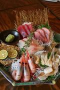 魚箱 大井町店