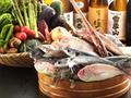 旬魚彩菜 ととまんま