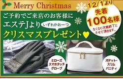 クリスマスプレゼントです☆