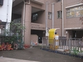 鈴木助産院ひまわり保育園