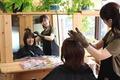 Log Hair
