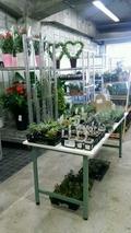 植木園芸卸売 パフ