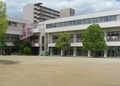 学校法人清泉学園 ひばり幼稚園