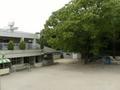 学校法人 日前幼稚園