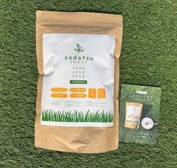 Green&Bodyに新しい商品が入荷しました。その名も【sodatdu(育つ)プロテイン】です!