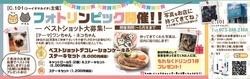 ワンちゃん・ネコちゃん好きの方必見!フォトリンピック開催!!